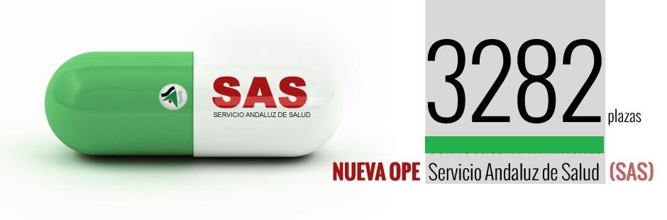 banner-SAS-2015