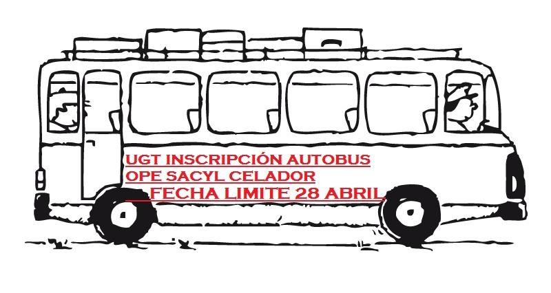 autobus-escolar-01
